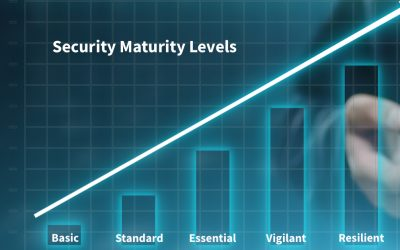 Which Security Maturity Level Does Your Company Have?